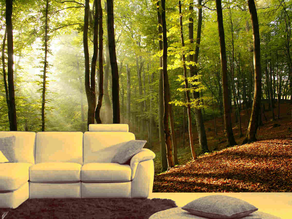 Prepossessing 90 wall murals nature design inspiration of for Custom mural wallpaper